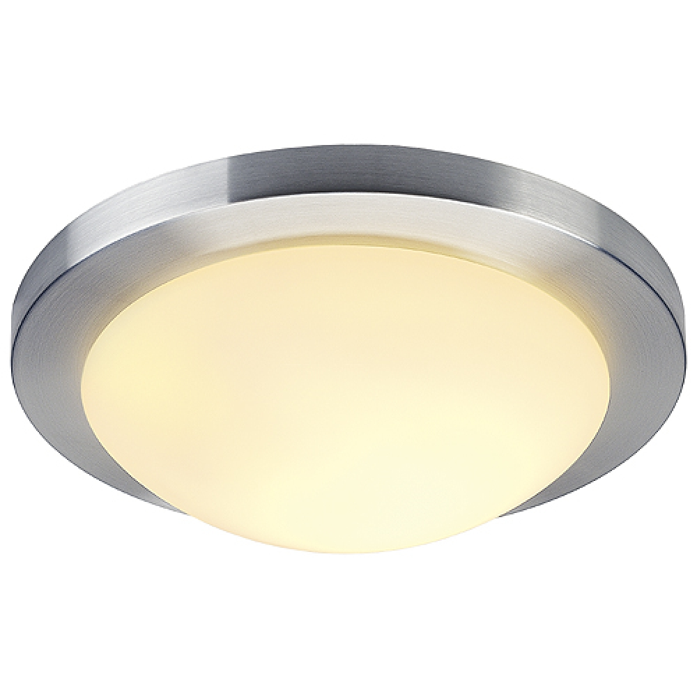 Large Paramount Flush Ceiling / Wall Light