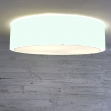 Flush Drum Shade Pale Green